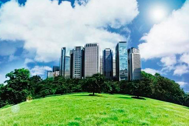 Conservar Areas Verdes